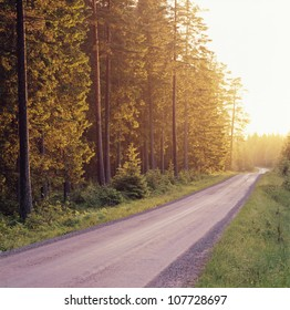 Road by forest at dawn