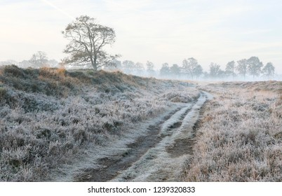 road in the countryside during frosty cold morning