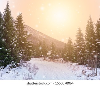 Road covered in snow leading  through spruce forest to wooden lodge in the background. Sun shines over winter landscape. Mountain in background. Warm orange, green colors, snowfall, snowflakes