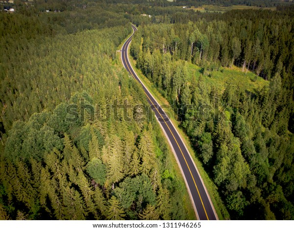 The road crosses the forest landscape of Finland