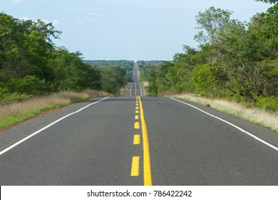 Road crossing Caatinga Plains in Piaui, Brazil
