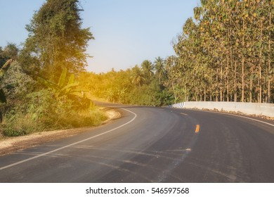 The road curve through forest.