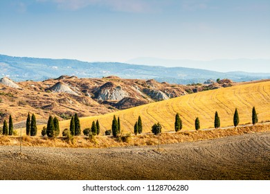 Road and cypresses on a hill near Asciano in Crete Senesi, Tuscany, Italy
