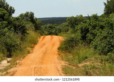 A road disappears down into the jungle in Africa.