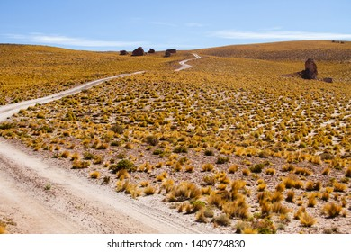 A road in a dry place