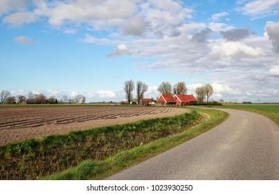 road in Dutch farmland during sunny day, Groningen