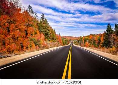 A road in the fall