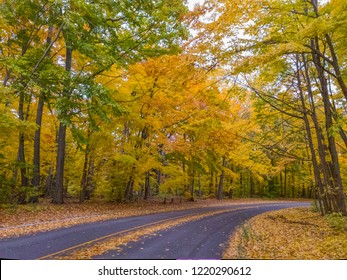 A road in fall in Oakville, Ontario.