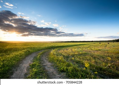 Road in the field against the sunset background