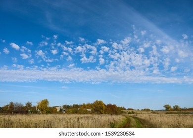 Road in the field and clouds on a blue sky