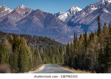 the road in the forest to the mountains with snowy peaks