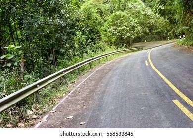 road in the forest with safety guard