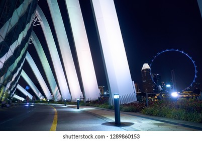 Road in the Gardens by the Bay at night in Singapore