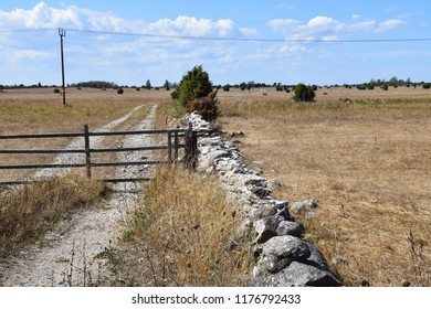 Road and gate into a wide grassland at the swedish island Oland