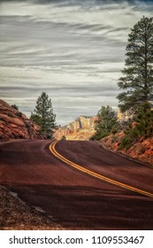 The road going through Zion's national Park Utah.
