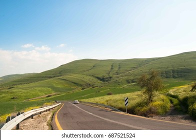Road in the Golan Heights , early spring .