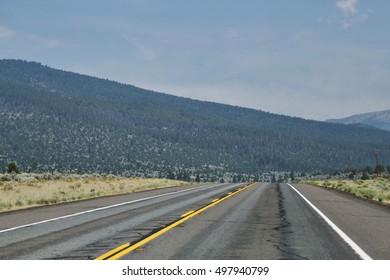 Road Gone