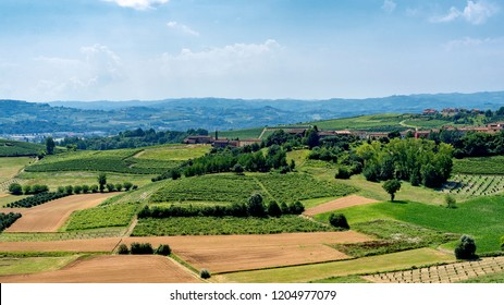 The road from Govone to San Martino Alfieri, Asti, Monferrato, Piedmont, Italy, at summer
