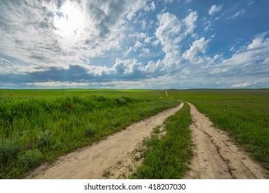 road in a green field