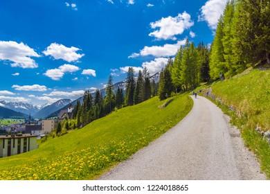 Road in green field of Alps mountains, Davos,  Graubuenden, Switzerland