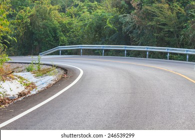 Road in a green forest, national park