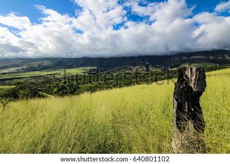 2d1f6a80ee4a The Road to Hana on Maui Island in Hawaii  mountain landscape  summer  background