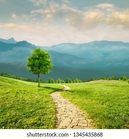Road to health. Seasonal natural backgrounds with transparent air and beauty meadow