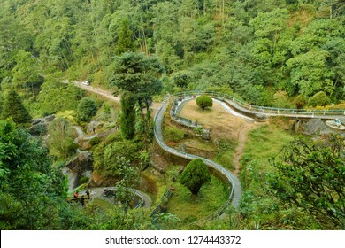 Road in hill surrounded by greenery. View from top of rock garden, Darjeeling