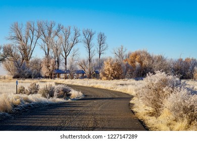 A road into Modoc National Wildlife Refuge hunting area with frost on top of plants and weeds in the area