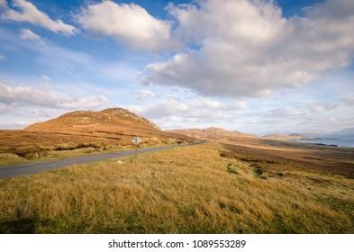 Road in Irish landscape