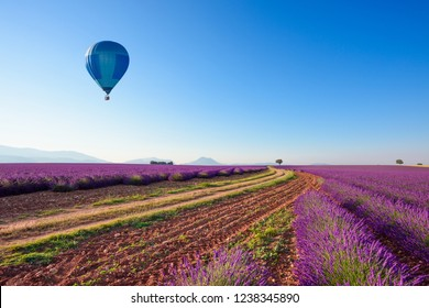 Road in lavender fields in Provence South France with hot air balloon at sunny summer morning