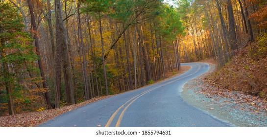 Road leading to campsites near Jordan Lake in North Carolina