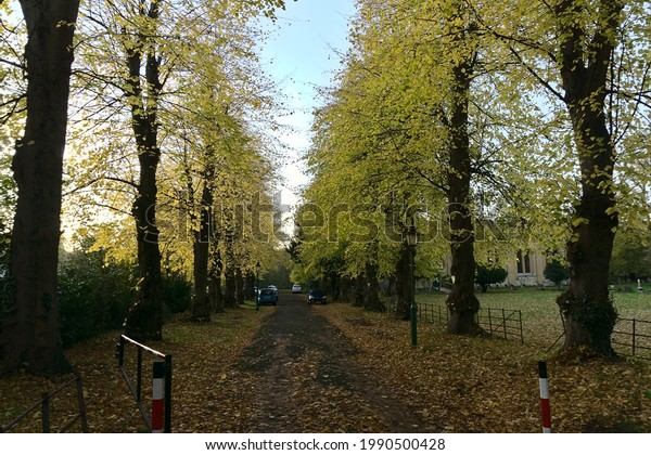 Road leading to a cathedral in a residential area  during autumn, Oxford, United Kingdom on 10.11.2019. Colorful autumn leaves and trees.