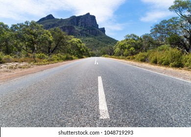 Road leading to the Grampians mountains lined by trees, Victoria, Australia