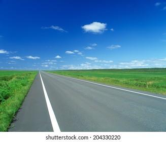 Road Leading To The Horizon