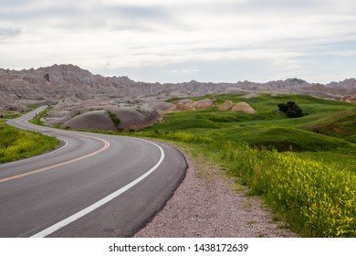 A road leading into dramatic mountain formations carved out by erosion showing layers of rocks with spring wildflowers in Badlands National Park, South Dakota.