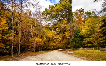 A road leading into the woods of Eno River State Park in Durham, North Carolina captured during fall season. It is one of the best natural parks with hiking trails and wildlife near Duke University.