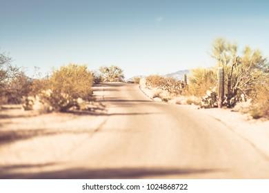 Road leading through Saguaro National Park East Rincon Mountain district near Tucson Arizona desert landscape