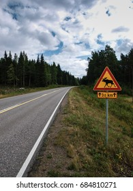Road leading through the Scandinavian forest with moose warning sign