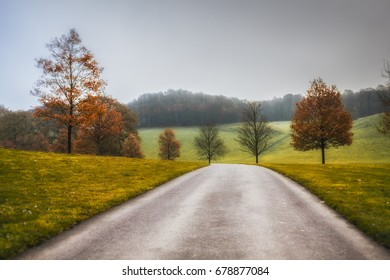 A road leads down the valley past some trees that are shedding their leaves ready for the harsh Winter months ahead.