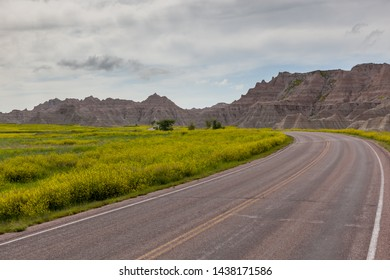 A road leads into the dramatic landscape of Badlands National Park with yellow super bloom wildflowers on the left and large eroded dirt formations on the right.