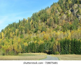 the road leads to a mountain overgrown with forest. Green and yellow autumn trees. Norway, Larvik.
