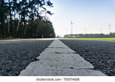 Road leads to windmills in a bioenergy park