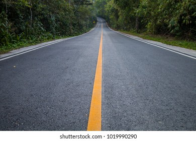 road line go travel