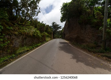 Road in the Macizo de Anaga mountain range. The northern part of Tenerife. Canary Islands. Spain.
