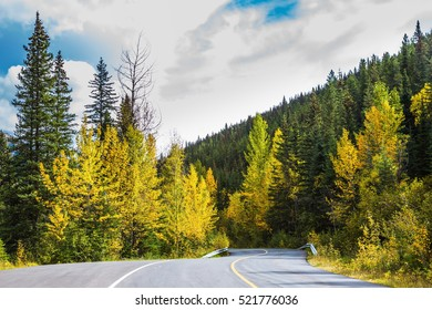 The road in magnificent Rocky Mountains. The warm Indian summer in October. Dense evergreen and deciduous forests. The concept of active tourism