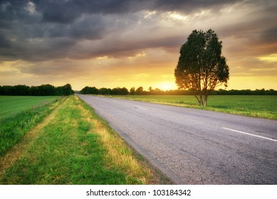 Road in meadow on sundown. Nature composition.