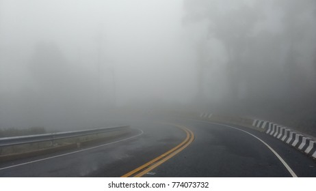 Road in to mist