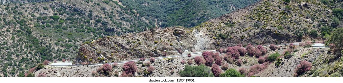 Road in mountain area of Crete island, Greece