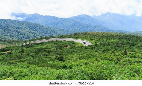 The road in the mountain of japan